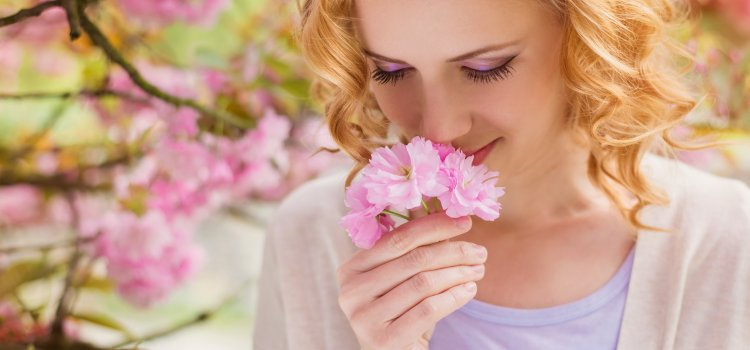 Antihistamines for Hayfever Season
