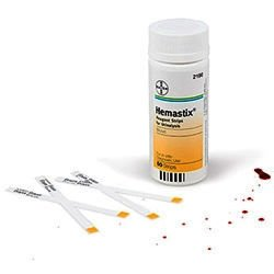 Hemastix Reagent Strips Pack of 50