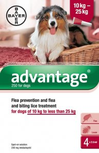 Advantage for Medium Dogs Pack of 4 Pipettes