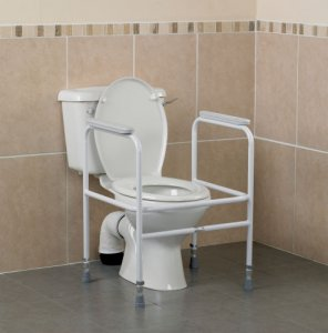 Patterson Free Standing Toilet Frame