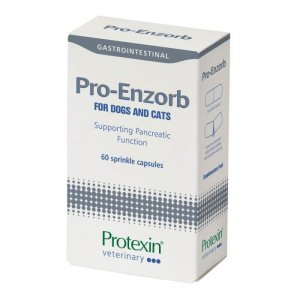 Protexin Pro-Enzorb Capsules Pack of 60