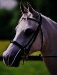 Equilibrium Net Relief Muzzle Net for X Large Horse (Black)